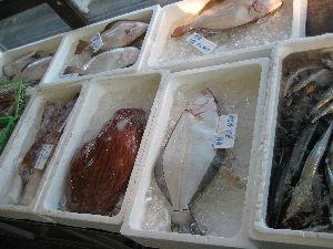 銚子漁港_05.jpg