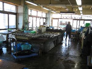 銚子漁港_07.jpg
